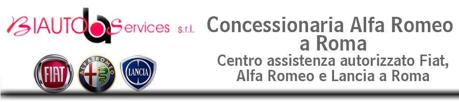 BIAUTO SERVICES