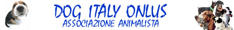 DOG ITALY ONLUS