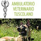 AMBULATORIO VETERINARIO TUSCOLANO
