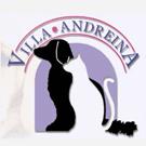 Villa Andreina pensione per cani a roma