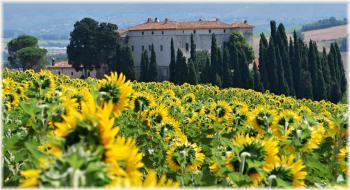 CASTELLO DI CASIGLIANO COUNTRY INN - Case vacanza e ristorante ACQUASPARTA