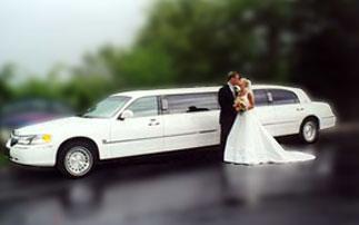 NOLEGGIO LIMOUSINE - noleggio affitto limousine MILANO