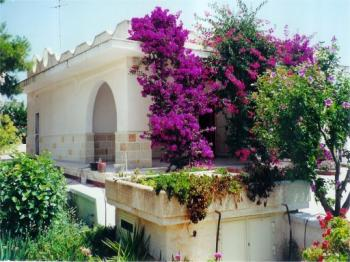 VILLA CLARA - Villa Mediterranea MANDURIA